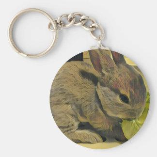 Mini Rex Rabbit BASIC round can key holder Keychain