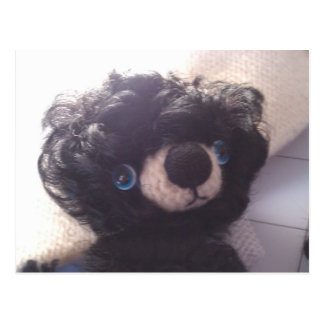 mini teddy bear black blue eyes postcard