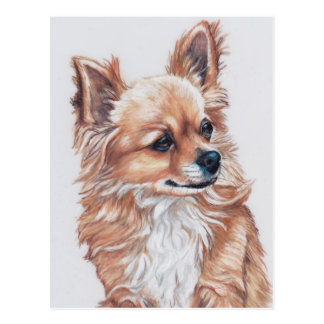 Mini the Chihuahua DogArt Postcard