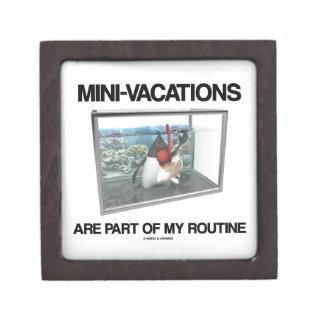 Mini-Vacations Are Part Of My Routine (Java Duke) Keepsake Box