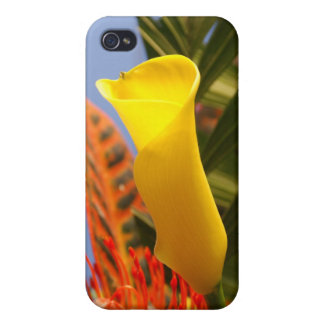 mini yellow calla lily cases for iPhone 4