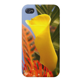 mini yellow calla lily iPhone 4/4S case