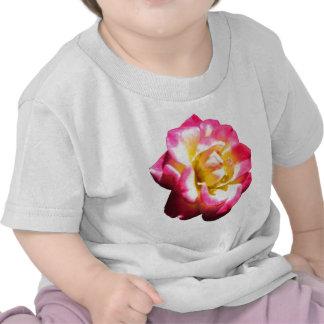 Miniatura color de rosa americana 038 de la camiseta