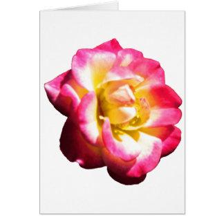 Miniatura color de rosa americana 038 de la socied tarjeta de felicitación