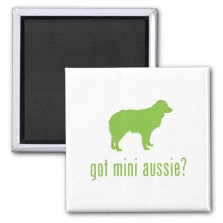 Miniature Australian Shepherd 2 Inch Square Magnet