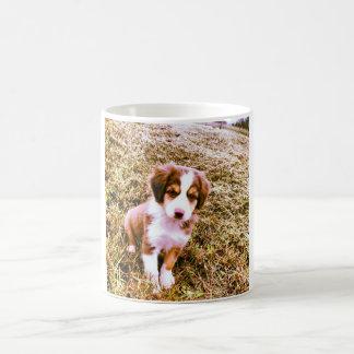 Miniature Australian Shepherd! Mini Aussie Puppy! Coffee Mug