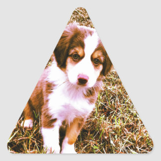Miniature Australian Shepherd! Mini Aussie Puppy! Triangle Sticker