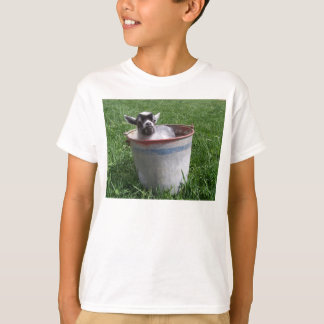 Miniature Baby Goat in a bucket T-Shirt