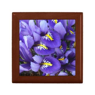 Miniature Blue Irises Spring Floral Gift Box