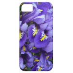 Miniature Blue Irises Spring Floral iPhone SE/5/5s Case