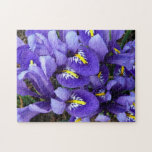 Miniature Blue Irises Spring Floral Jigsaw Puzzle