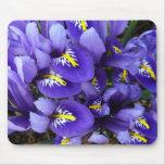 Miniature Blue Irises Spring Floral Mouse Pad