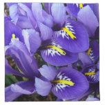 Miniature Blue Irises Spring Floral Napkin