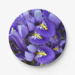 Miniature Blue Irises Spring Floral Paper Plate
