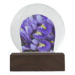 Miniature Blue Irises Spring Floral Snow Globe