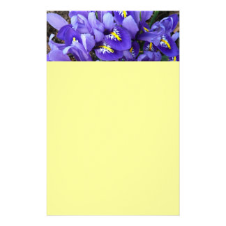Miniature Blue Irises Spring Floral Stationery