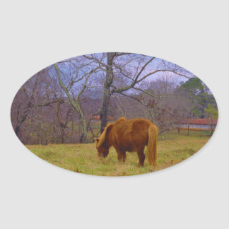 Miniature brown horse blustery sky oval sticker
