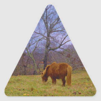 Miniature brown horse blustery sky triangle sticker