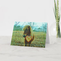 Miniature Brown horse Valentine Heart Holiday Card