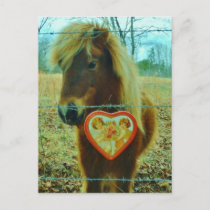 Miniature Brown horse Valentine Heart Holiday Postcard