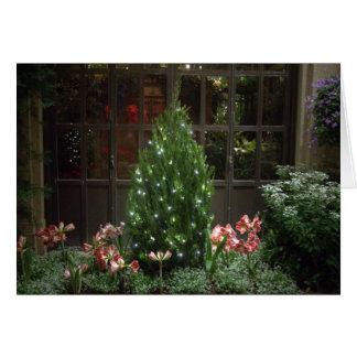 Miniature Christmas Tree Greeting Cards