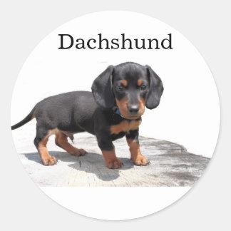 Miniature Dachshund Classic Round Sticker