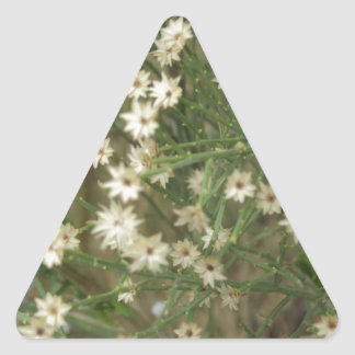 Miniature Desert Flowers Triangle Sticker