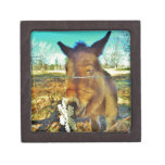 Miniature Donkey & Snowflake Premium Gift Box