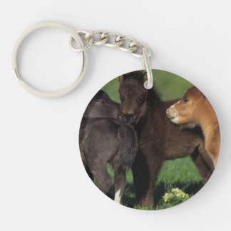 Miniature Foals 1 Keychain