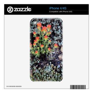 Miniature Garden at Gem Lake iPhone 4S Decal