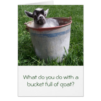 Miniature Goat in a Bucket Greeting Card