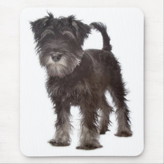 Miniature Gray Schnauzer Puppy Dog Mouse Pad