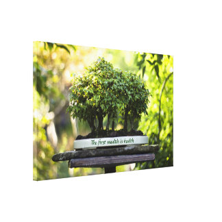 Miniature Green Forest Bonsai Pot Pedestal Leaves Canvas Print