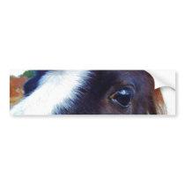 miniature horse face close-up bumper sticker