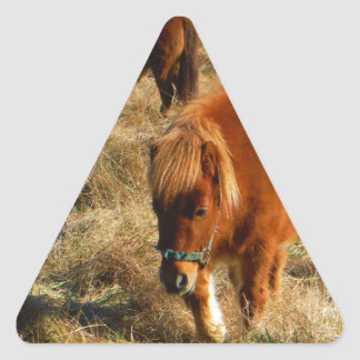 miniature Horse ponies Triangle Sticker