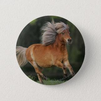 Miniature Horse Running Button