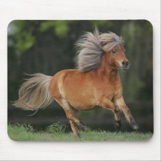Miniature Horse Running Mouse Pad