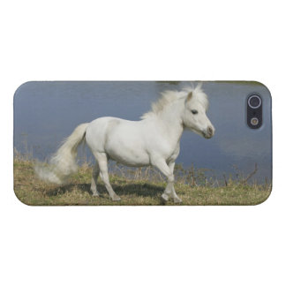 Miniature Horse Running Near Water Case For iPhone SE/5/5s