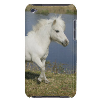 Miniature Horse Running Near Water Case-Mate iPod Touch Case
