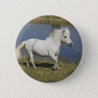 Miniature Horse Running Near Water Pinback Button