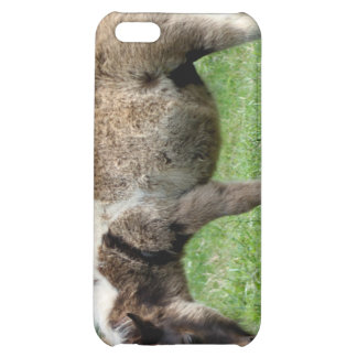 Miniature Horses Cover For iPhone 5C