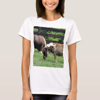 Miniature Horses T-Shirt