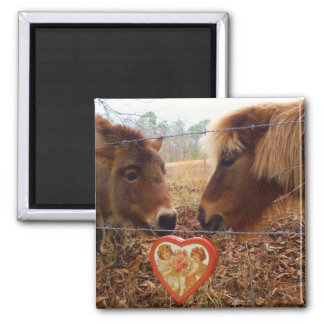 Miniature horses Valentine Red Heart Magnets