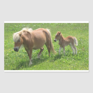 Miniature Mare and Foal Stickers