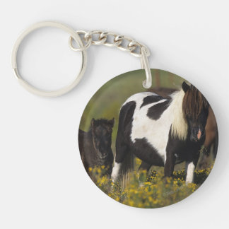 Miniature Mare & Foal in the Flowers Keychain