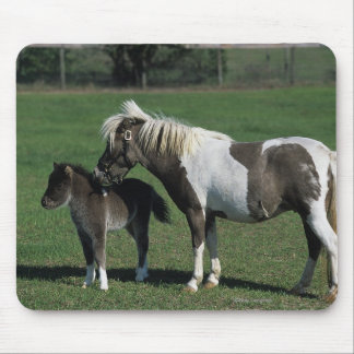 Miniature Mare & Foal Standing Mouse Pad