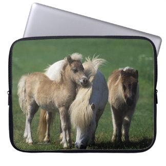 Miniature Mare & Foals 1 Computer Sleeve
