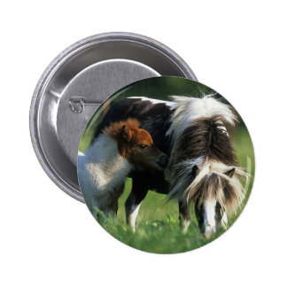 Miniature Mare & Foals 2 Pinback Button