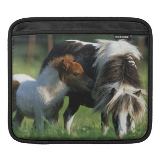 Miniature Mare & Foals 2 Sleeve For iPads