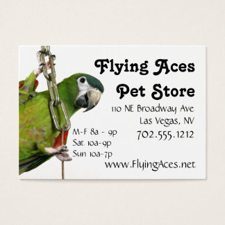 Miniature Noble Macaw Business Card